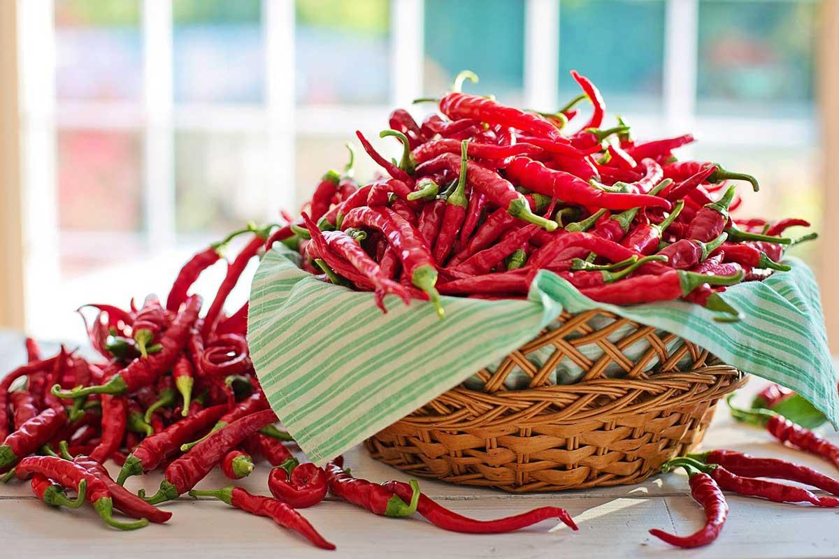 Scharfe Cayenne Paprika